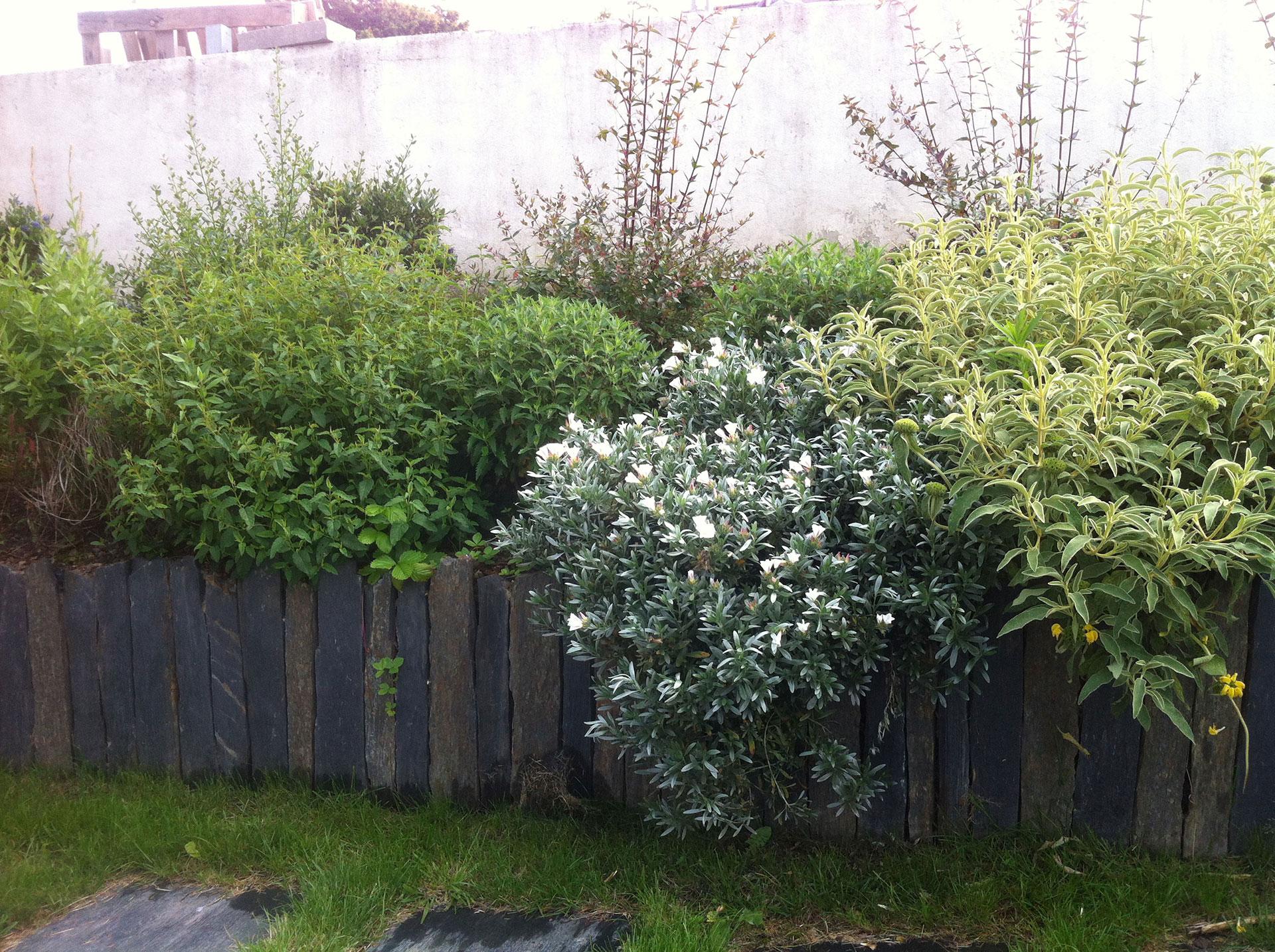 Piquet En Ardoise Bois Jardin piquets, bordures de schiste noir 60cm